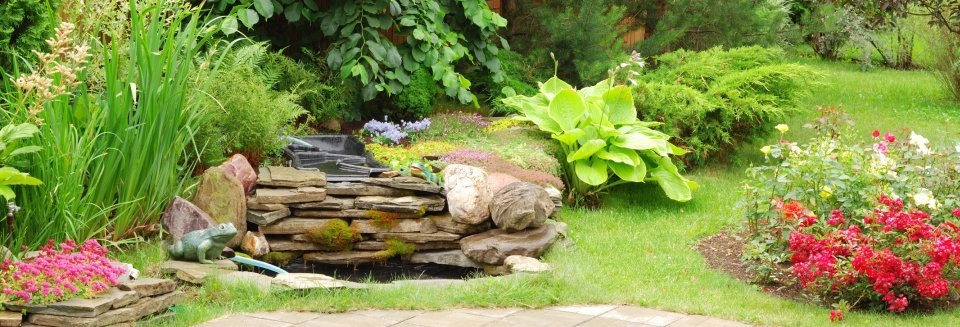Landscaping and Lawn Services
