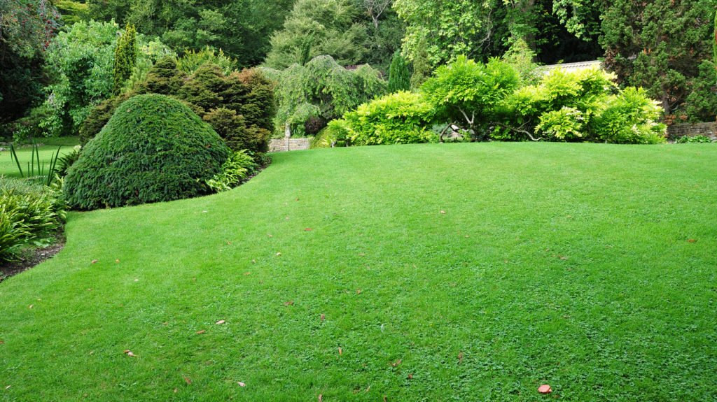 Spartan Lawn Care, Landscapers, Professional Snow Removal