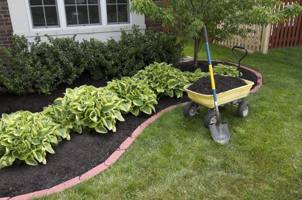 Mulch, Dirt, Plant Bushes, Landscape